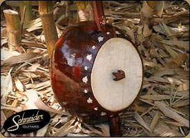 handmade indian instruments custom built - Ectara